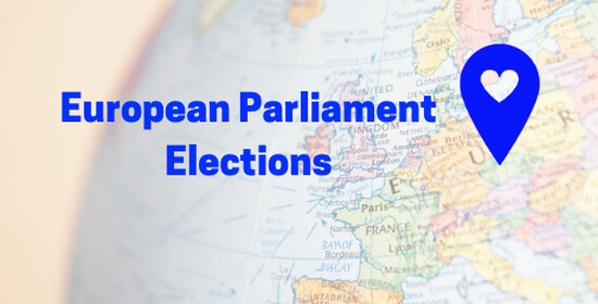European Parliament Elections – What do parties in the Czech Republic say about integration?